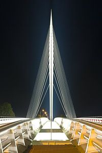 Calatravabrug - Harp 1