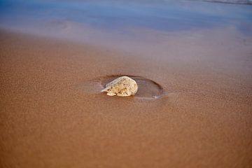 Kleiner Stein auf griechischer Insel von Jason King