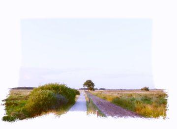 Dwingeloo Moor  van Pim Feijen