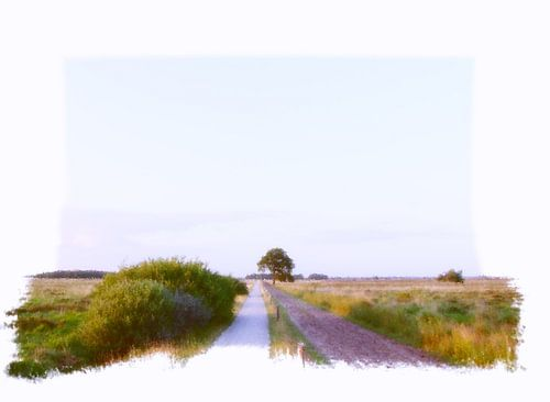 Dwingeloo Moor  van