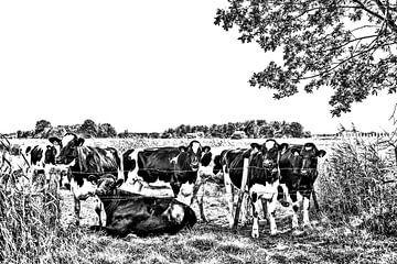 Kühe auf der Wiese von Ans Bastiaanssen