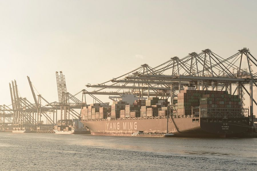 Container schip aangemeerd in de haven van Rotterdam op de Maasvlakte