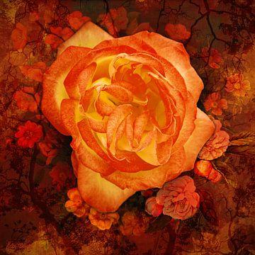 Orangefarbene Rose auf einem floralen, orangefarbenen Hintergrund. von Helga Blanke