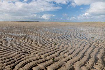 Laag water op de Hors, Texel