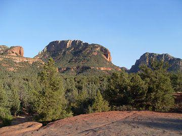 National Park + Mountains + USA + Amerika von Jeffrey de Ruig