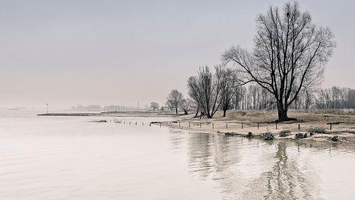 Winters nagloed von Peter Vruggink