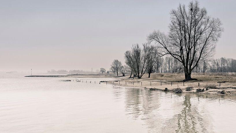 Winters nagloed van Peter Vruggink