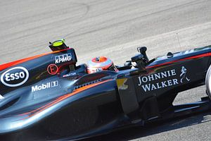 Jenson Button Spa Francorchamps 2015 van