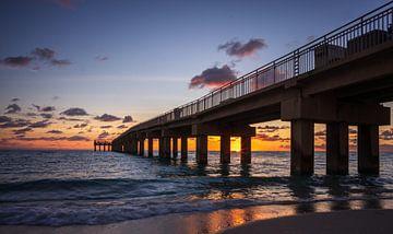 Miami Beach van