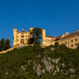 Schloss Hohenschwangau van Remko Bochem