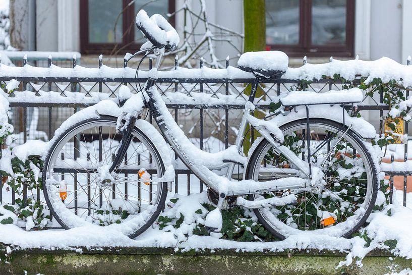 Verschneites parkendes Fahrrad an einem Gartenzaun, Bremen, Deutschland, Europa von Torsten Krüger