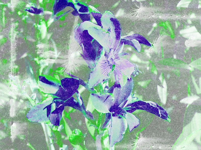 FlowerPower Fantasy 5-B van MoArt (Maurice Heuts)