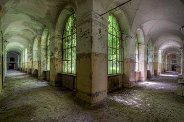 Corridor vert sur Perry Wiertz