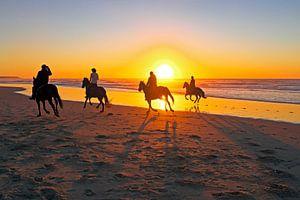 Paardrijden op het strand bij zonsondergang van