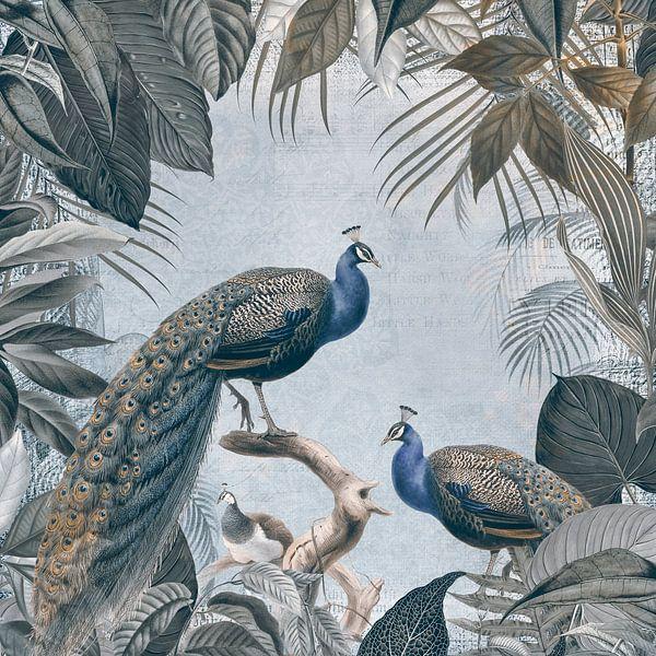 Peacocks in Paradise van Andrea Haase