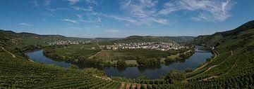 Panorama Trittenheim a. Mosel van Klaartje Majoor