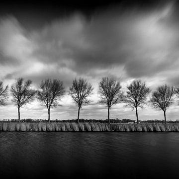 Wind en winter in waterland van Rene  den Engelsman