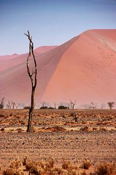 NAMIBIA ... pastel tones II van Meleah Fotografie