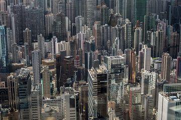 A forest of high rises in Hongkong Central van Fleur Halkema