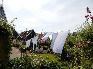 Wäscheleine mit Wäscherei und Hütte im Hintergrund von Joke te Grotenhuis