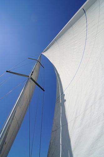 Met de wind in de zeilen van