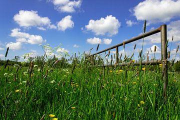 Blauwe lucht groen gras van Gert-Jan Kamans