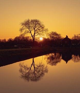 zonsopkomst van Freddie de Roeck