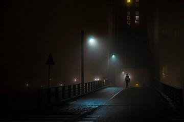 Mist van Anahi Clemens