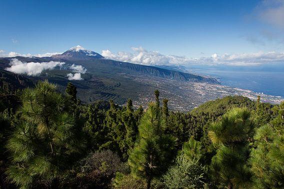 Valley of La Orotava van Ulrich Brodde