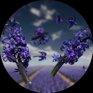 Flower Power - Orientalis van Claire Droppert