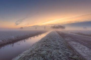 Mist in de polder sur Dennisart Fotografie