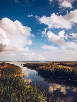 Estonia - Saaremaa van Alexander Voss