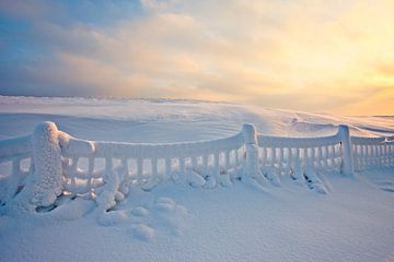 Winter landschap met besneeuwd hek tijdens zonsopkomst van Peter Bolman