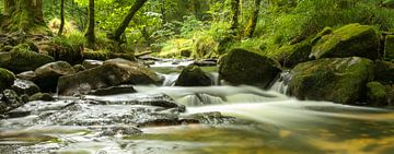 Golitha Falls , Cornwall in Bodmin moor natuurgebied van Marcel van den Bos