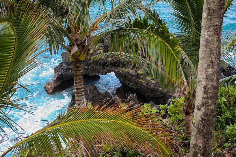 Lavakust op Maui van Louise Poortvliet