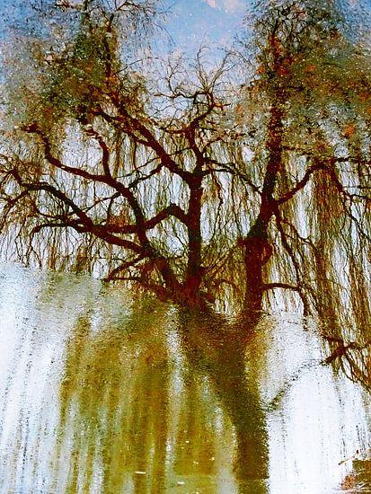 Tree Magic 196 van MoArt (Maurice Heuts)