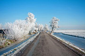 Winter op het platteland in Nederland van Nisangha Masselink