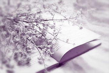 Stilleben mit Buch und Blumen von Fotografie Sybrandy