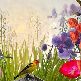 Birds, Flowers & Butterflies van Leon Brouwer