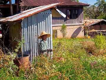 De Tuinvrouw van Kalaw Myanmar van Rik Pijnenburg