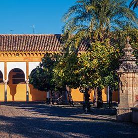 Córdoba - Mezquita / Patio de los Naranjos van Alexander Voss