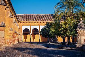 Córdoba - Mezquita / Patio de los Naranjos van