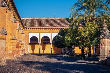 Cordoue - Mezquita / Patio de los Naranjos sur