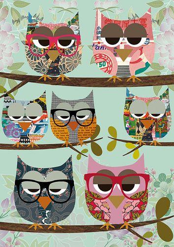 Cute nerd Owls Collage