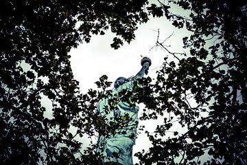 Statue of Liberty 05 van FotoDennis.com
