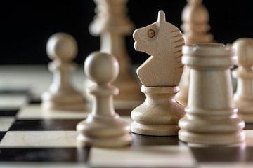 Weiße Holzschachfiguren mit Fokus auf den Springer auf einem Schachbrett vor schwarzem Hintergrund,  von Maren Winter