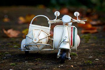 Speelgoed scooter en herfsttinten van Jenco van Zalk