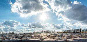 Panorama landschap