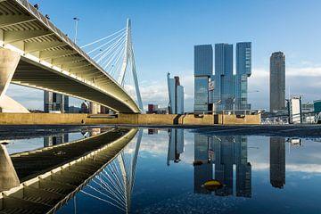 Erasmusbrug Rotterdam van Rdam Foto Rotterdam