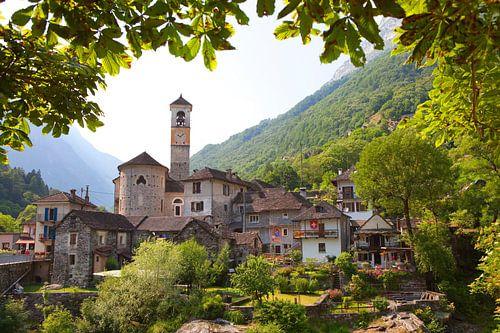 Ticino  van